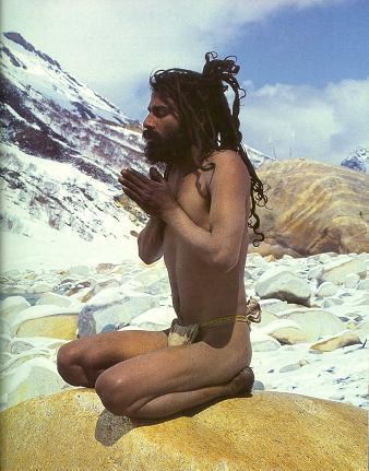 yogi_himalaya3