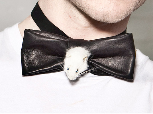 taxidermy-accessories-2