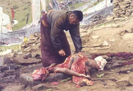 un cadavere offerto ai rapaci