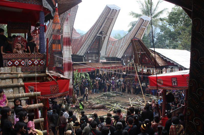 Tana_Toraja,_Salu_funeral_(6823105668)