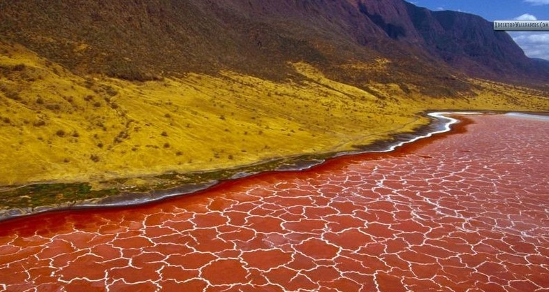 lake-natron-1[2]