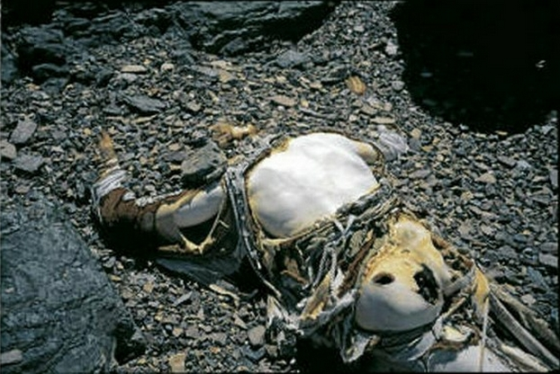 Dead-bodies-on-Mount-Everest_5