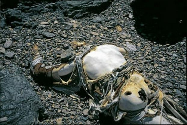 Dead-bodies-on-Mount-Everest_5