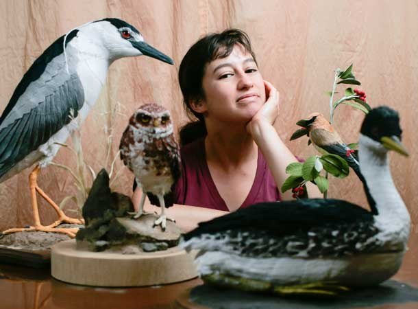 Vegan Taxidermy  An Intersection of Art, Science, and Conservation