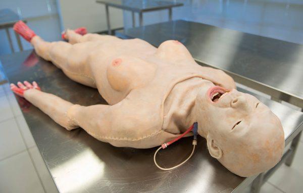 Z-SSH-F-0015-Full-Body-Skin-Table