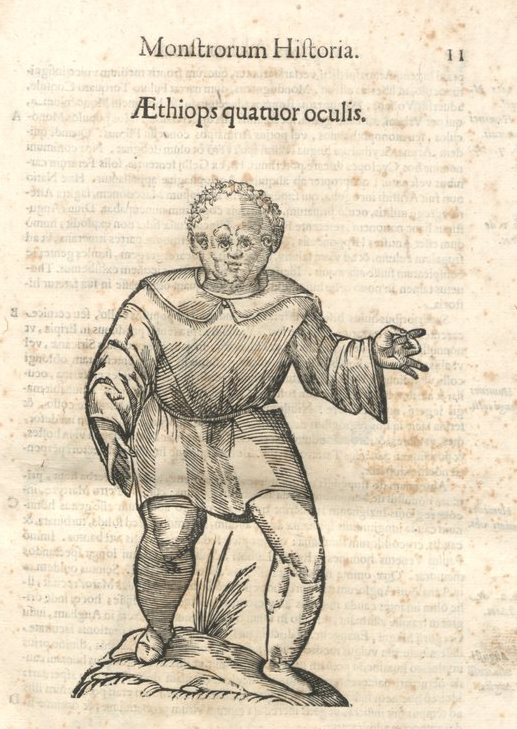 mh-aethiops-4oculis