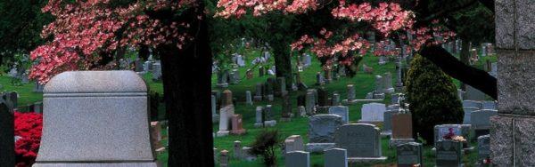 evergreens-cemetery-bushwick-brooklyn-nyc