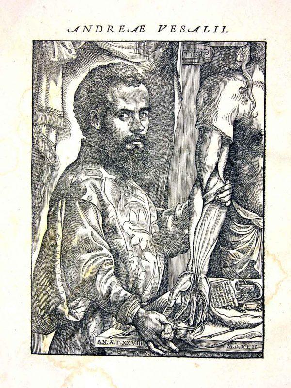 1543-Vesalio1