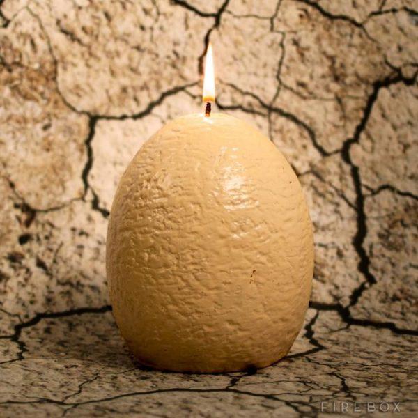 hatching-dinosaur-egg-candle-8981